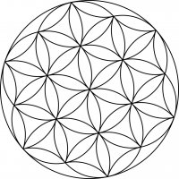 Crystal grid (grid) The flower of life wrapped